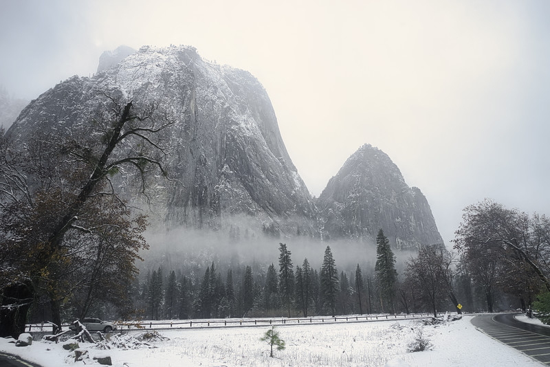 A foggy winter day in Yosemite Valley