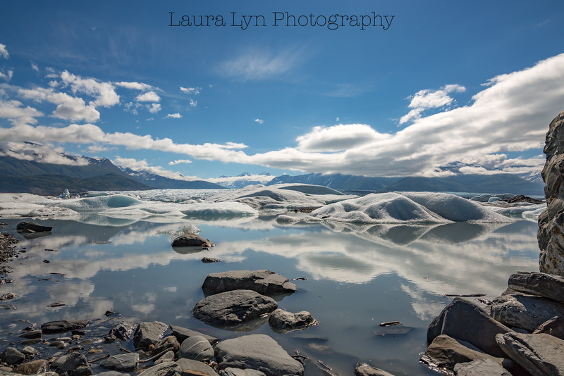 Taken near Knik in June 2014.