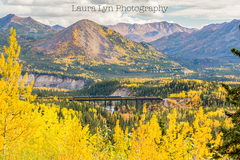 Taken in Denali National Park in September 2015