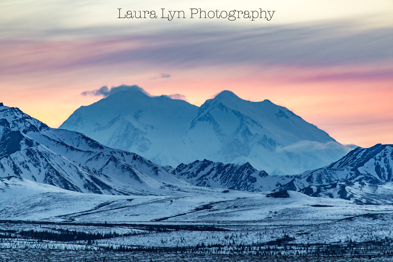 Taken in Denali National Park in April 2015.