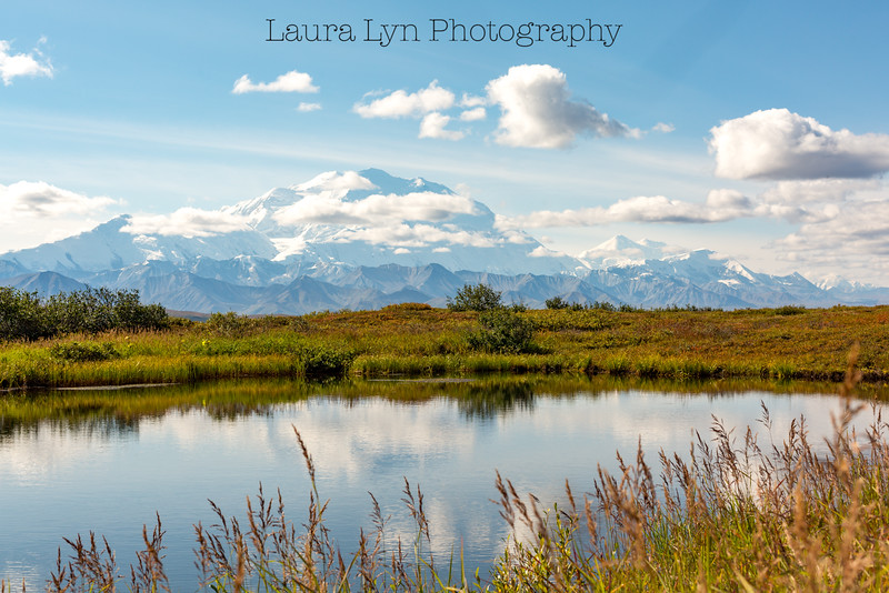 Taken in Denali National Park in September 2014.