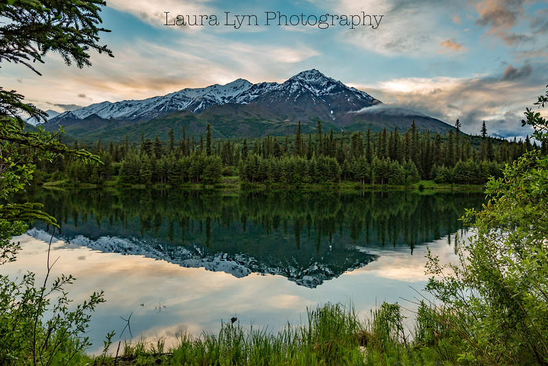 Taken south of Denali National Park in June 2014.