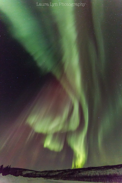 Northern Lights 6-2015