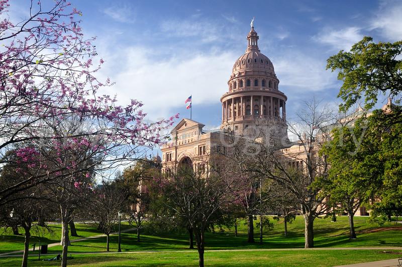 Capitol in Spring