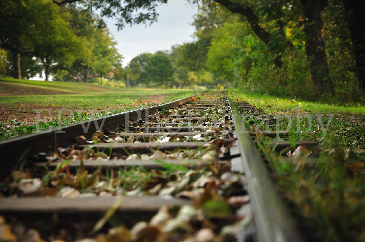 Zilker Railroad