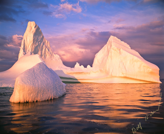 Iceberg in Iceberg Alley off the Great Northern Peninsula, St. Anthony, Labrador Newfoundland, Canada