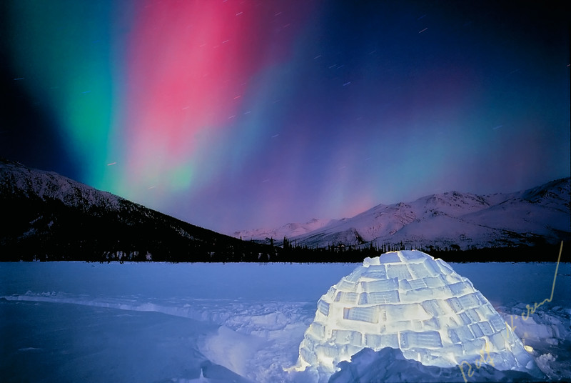 Igloo with Northern Lights, northern Alaska, Brooks Range, Alaska, USA