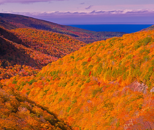 Fall at the Cabot Trail in Cape Breton Highlands National Park on Cape Breton in northern Nova Scotia, Canada. Highlands National Park Berglandschaft, Wald (Laubwald), Herbst