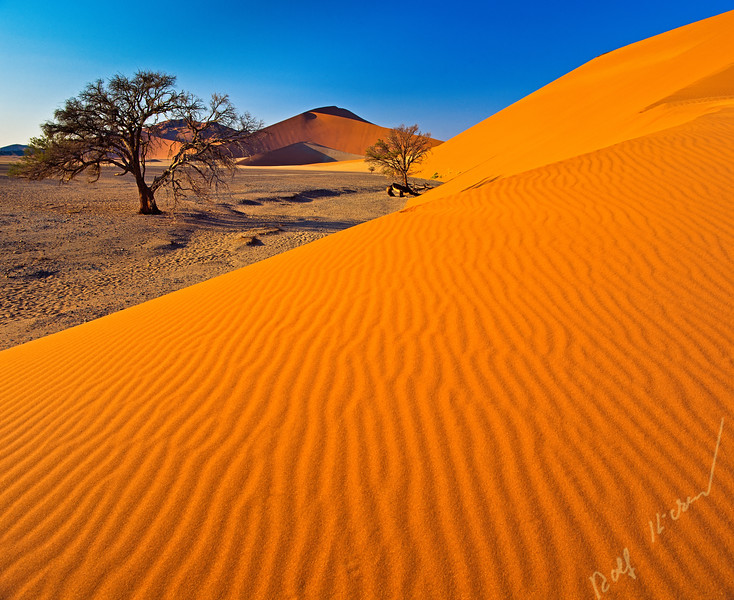 Sossusvlei sand dunes in Namib-Naukluft National Park of Namibia, Africa