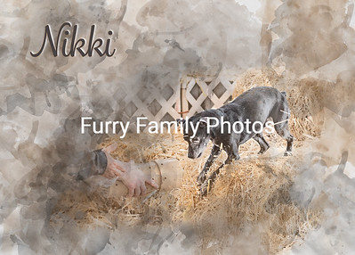 Nikki BH Watercolor