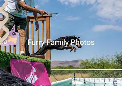 2017-June Animal Watchers NADD Trials