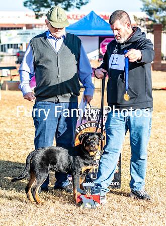 Phoenix Rottweiler Club
