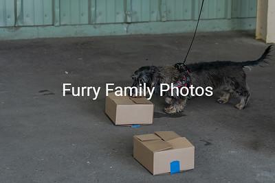 FFP_5622
