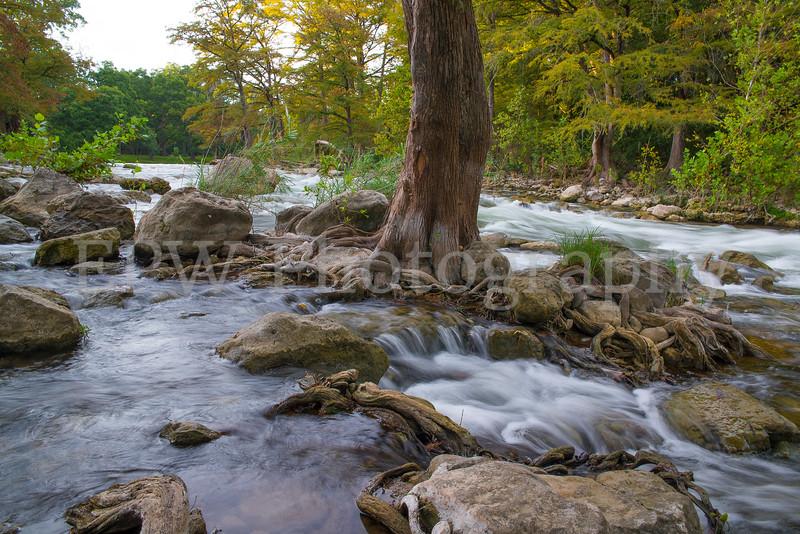Guadalupe River II