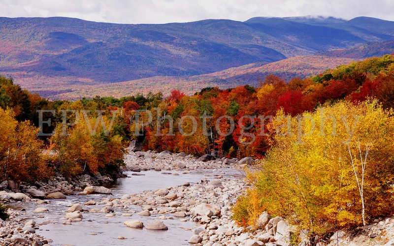 Autumn in New Hampshire I