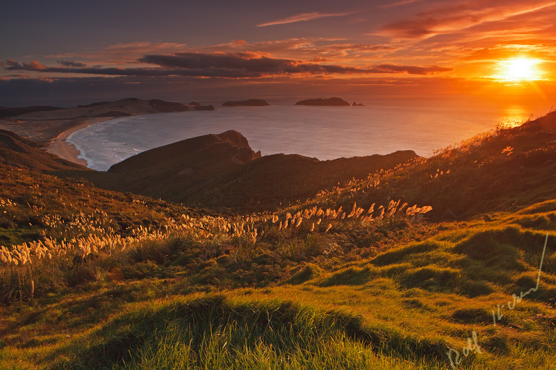 Sunset over Te Werahi Beach, Motuopao Island, and Cape Maria from Cape Reinga, Northland, North Island, New Zealand.