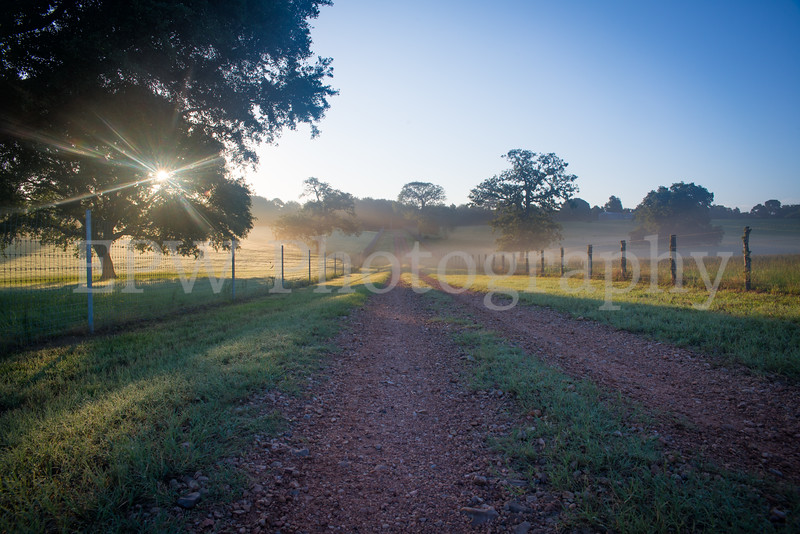Tinsleon Ranch Sunrise I