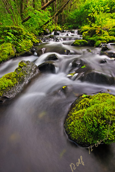 Daniels creek on northern Vancouver Island, long exposure flowing water photograph.