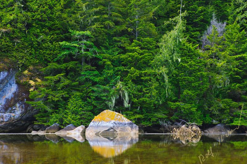 Shoreline along the Great Bear Rainforest in British Columbia, Canada.