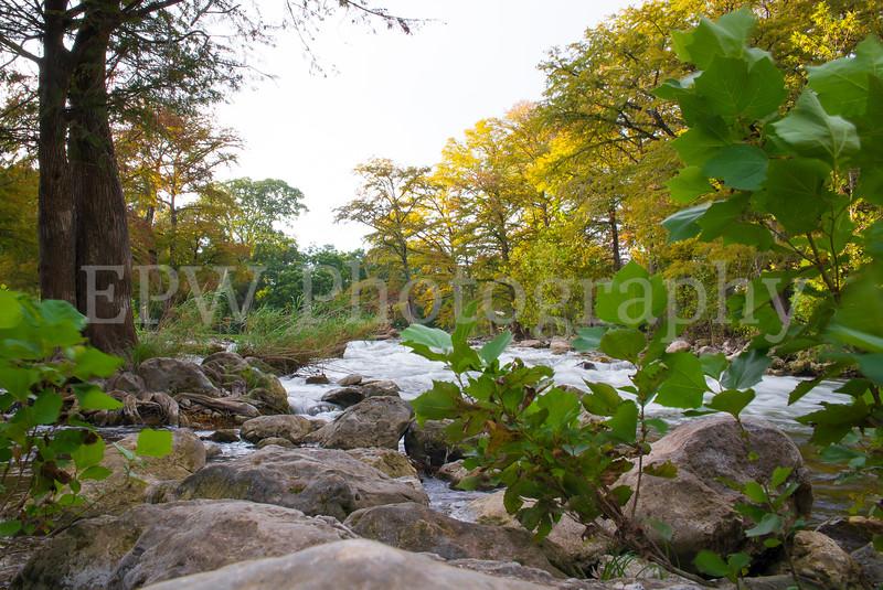Guadalupe River V