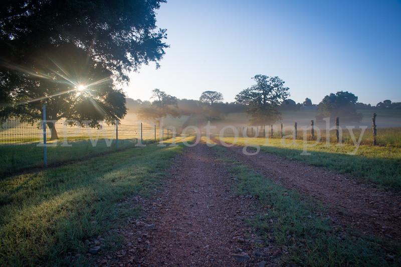 Tinsleon Ranch Sunrise I
