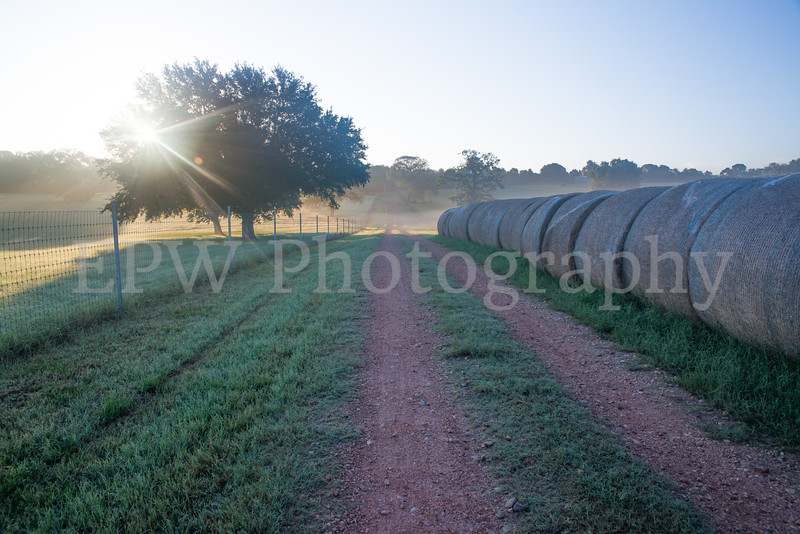 Tinsleon Ranch Sunrise IIIV