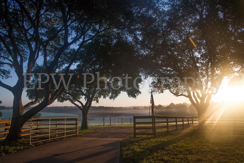 Tinsleon Ranch Sunrise III