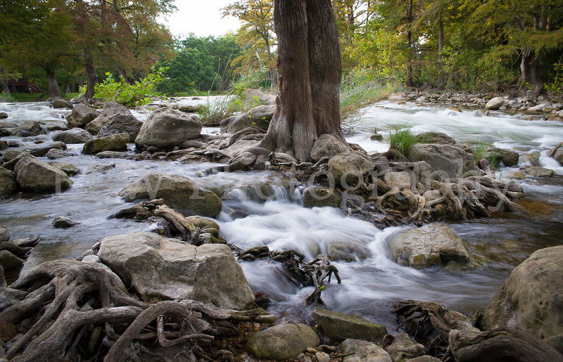 Guadalupe River III