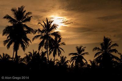 SriLanka 2014-46-2