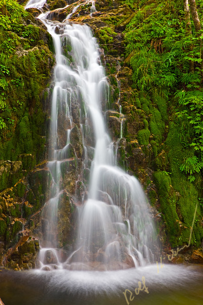 Waterfall in the rainforest near Port Alice, Northern Vancouver Island, Vancouver Island, British Columbia, Canada.