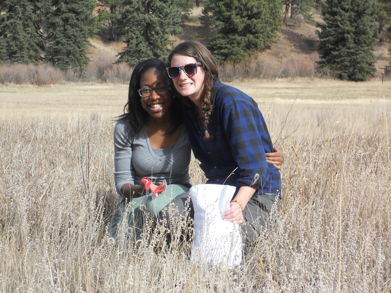Prairie sagewort - Artemisia frigida (ARFR4) collecting in Colorado. Photo by Peter Gordon & Darnisha Coverson, BLM CO.