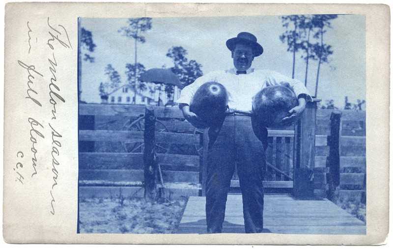 """The melon season is in full bloom"" c. 1920. Cyanotype Real Photo Post Card"