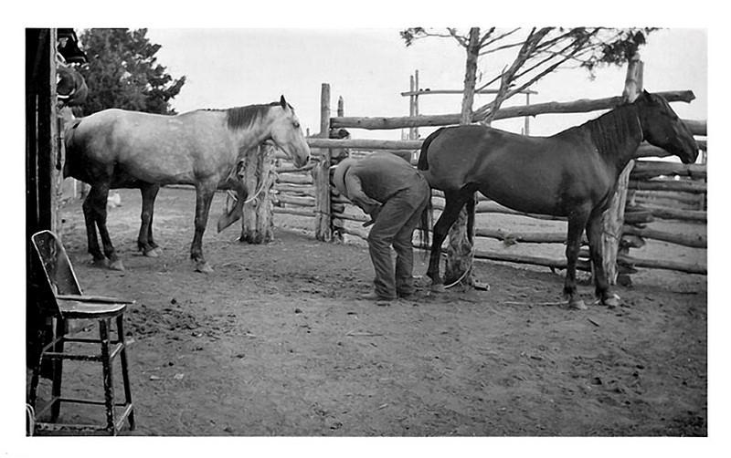 Ferrier Shoeing Horses, c. 1940s. Gelatin Silver Print Snapshot