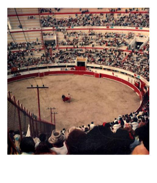 Bullfight, c. 1970s. Polaroid SX70 photograph (found on the ground outside a Polaroid building).
