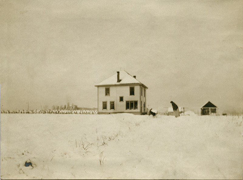 Woman and Dog After Snow Fall, Indiana, c. 1910. Gelatin Silver Print Snapshot