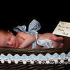 "09.05.09 = ""Basket Baby""<br /> Welcome to the world, Ian Mitchell Straub!  A very good friend of mine just had a baby and I was able to do the first photo shoot for the announcements!  This was my favorite from the shoot.  Too cute the little smirk on his face.  Looks like he is already up to something.  <br /> <br /> Sorry for my sporadic posting and commenting.  I have been very busy with mulitpal projects at home, work and of course, photography.<br /> <br /> Hope everyone has a safe and happy Holiday weekend!   Kris :D"