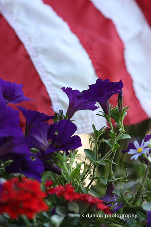 "06.14.09 = Shame, shame, shame on me, if I don't have a flag post for Flag Day!  June 14th is Flag Day and it is also my birthday. (All gifts from B&H are welcome) So you can see the shame in that.  I was out most all day yesterday, but didn't take a single shot until I got home.  My sister gave me this massive hanging basket for my birthday and I just set it on the bench on my front porch.  I loved how the my flag was just tickling the top of the flowers.  <br /> <br /> ""This flag, which we honor and under which we serve, is the emblem of our unity, our power, our thought and purpose as a nation.  It has no other character than that which we give it from generation to generation. The choice is ours.""  Woodrow Wilson"