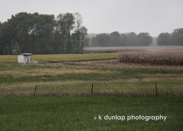 "10.09.09 = From sunny corn fields yesterday to foggy corn fields today.  I came across this foggy corn field the other day and pulled over in the rainy mist to shoot it.  I played around with this one in PS to get a pen and ink type of look. (check out in XL)  It's fun to try out new things every once in a while.  The scene reminded me of a few oil paintings I purchased last weekend at an art show from a young artist with a wise soul, Luke Stretar.  His work just captured me with its depth.  Check out his work at  <a href=""http://www.lukestretar.artpickle.com"">http://www.lukestretar.artpickle.com</a> <br /> <br /> ""Into every life a little rain must fall, some days must be dark and dreary.""  Henry Wadsworth Longfellow."