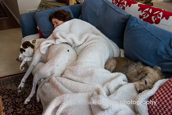 """11.28.14 = Black Friday <br /> <br /> This is what everyone should be doing on Black Friday, fighting for spot on the sofa and not traffic!  There are no expirations on this deal.  <br /> <br /> """"…zzzzzz……zzzzzz…….zzzzzz""""  Kasey, Gracie & Lucy too!"""