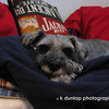 "02.28.14 = Flashback Friday - Jack 2006<br /> <br /> Just remembering my dear old friend Jack today. Those that met and knew him, quickly discovered he was much, much more. He had something different, something special.  A truly wise soul trapped in dog's body.  <br /> <br /> ""Dog's lives are too short. Their only fault, really.""  Agnes Turnbull"