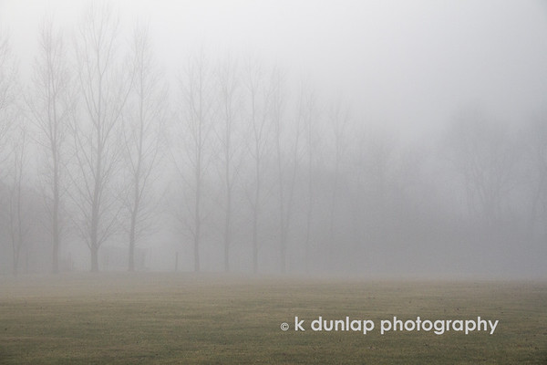 "02.10.18 = Foggy February <br /> <br /> ""February is just a short bridge between winter and spring.""  k dunlap"