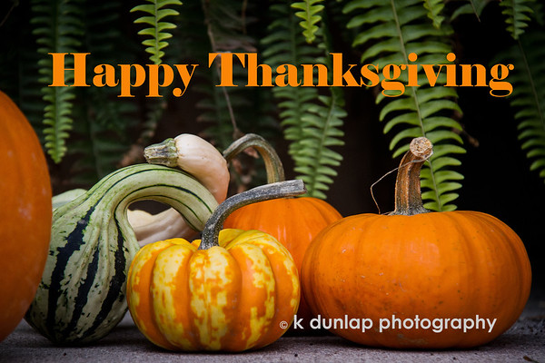 "11.28.19 = HaPpY  Thanksgiving! <br /> <br /> Giving thanks today for all my many blessings; some earned and others, undserved.  I'm truly grateful and wish you all a healthy and HaPpY Thanksgiving!  Oh, and especially to my sister who is doing all the cooking!  <br /> <br /> ""For each new morning with its light,<br /> For rest and shelter of the night,<br /> For health and food, for love and friends,<br /> For everything Thy goodness sends.""<br /> ~Ralph Waldo Emerson"