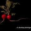 """01.15.10 = The radish<br /> <br /> I saw these lovely radishes and they just begged me to photograph them.  I still have some fruit to photograph, however, I need to wait until some of them are in season, so I am on to veggies!  <br /> Have a great weekend everyone!  <br /> <br /> """"If we're not willing to settle for junk living, we certainly shouldn't settle for junk food.""""  Sally Edwards"""