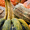 "11.09.11 = Great Pumpkins<br /> <br /> ""I don't see how a pumpkin patch can be more sincere than this one.  You look around and there's not a sign of hypocrisy. Nothing but sincerity as far as the eye can see.""<br /> Linus from It's the Great Pumpkin, Charlie Brown."