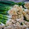 "02.28.12 = Spring Onions<br /> <br /> ""Life expectancy would grow by leaps and bounds if green vegetables smelled as good as beacon."" Doug Larson"