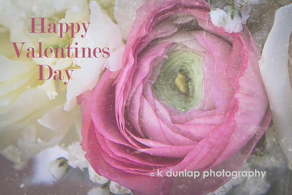 "02.14.15 = Happy Valentines Day<br /> <br /> ""A bell is no bell 'till you ring it,<br /> A song is no song 'til you sing it,<br /> And love in your heart<br /> Wasn't put there to stay ~<br /> Love isn't love<br /> <br /> 'Till you give it away.""  ~ Oscar Hammerstein"
