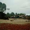 BD-SJN-2005-08-0093