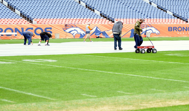 The grounds crew at Broncos Stadium at Mile High works on the turf in preparation for Saturday's 4A and 5A state championship football games. (Mike Brohard/Loveland Reporter-Herald)