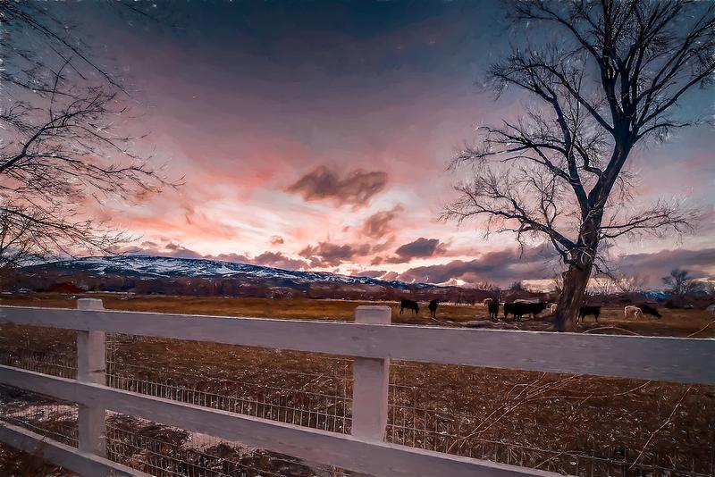 2501 Holcomb Ranch Ln Reno NV-print-061-042-2501 Holcomb Ranch Lane Reno-4200x2800-300dpi-EditImpression Workflow