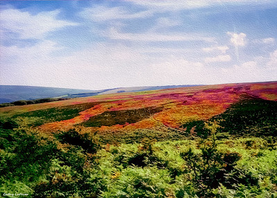 Exmoor National Park, Devon, England